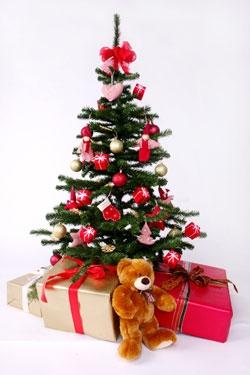 Dana Marton teddy under tree