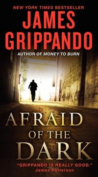 Afraid Of The Dark by James Grippando