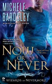 Now Or Never by Michele Bardsley