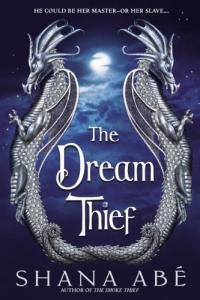 The Dream Thief by Shana Abe