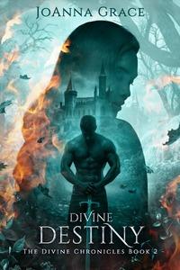 Divine Destiny by JoAnna Grace
