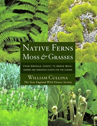 Native Ferns, Moss, and Grasses