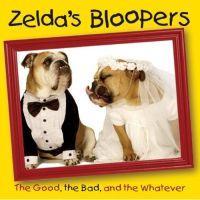 Zelda's Bloopers