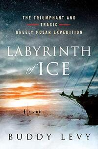 Labyrinth of Ice