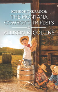Home on the Ranch: The Montana Cowboy's Triplets