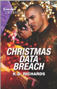 Christmas Data Breach