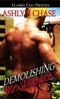 Demolishing Mr. Perfect by Ashlyn Chase