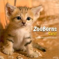 Zooborns Cats!