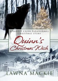 Quinn's Christmas Wish