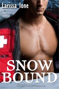 Snowbound by Larissa Ione