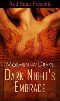 Dark Night's Embrace