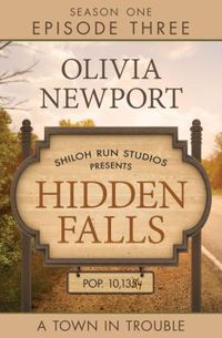 Hidden Falls by Olivia Newport
