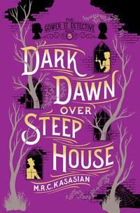 Dark Dawn Over Steep House