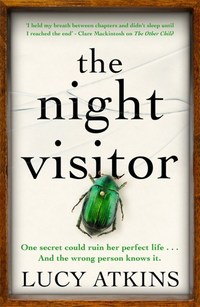 The Night Visitor