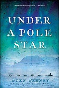 Under a Pole Star