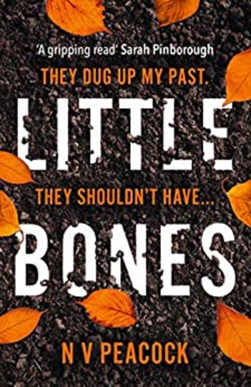 Little Bones by N.V. Peacock