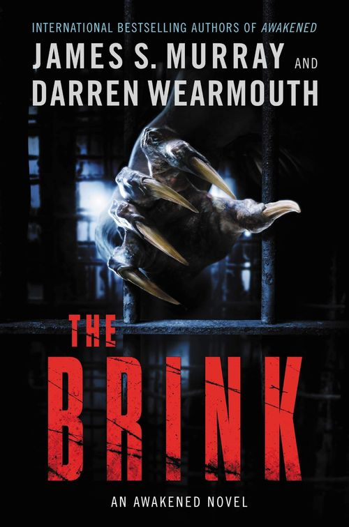 The Brink by James S. Murray