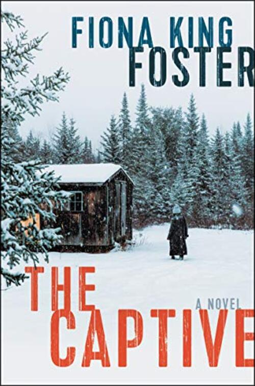 The Captive by Fiona King Foster