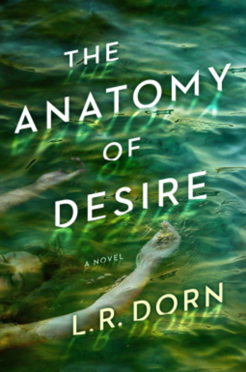 The Anatomy of Desire by L.R. Dorn