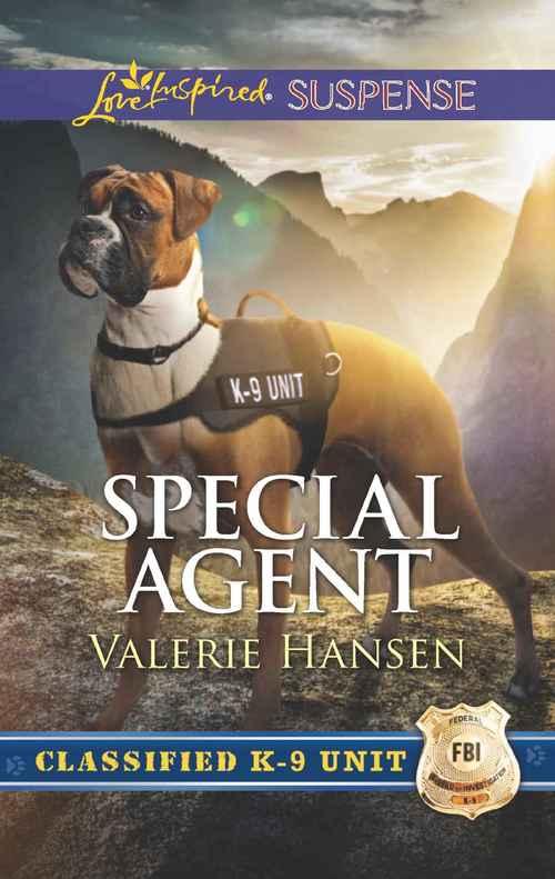 Special Agent by Valerie Hansen
