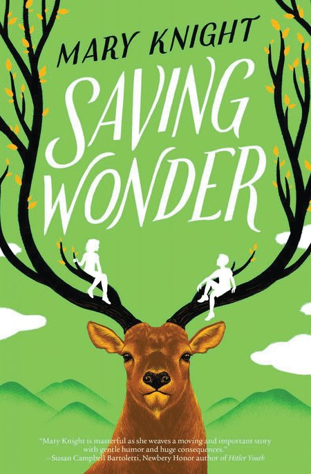 Saving Wonder