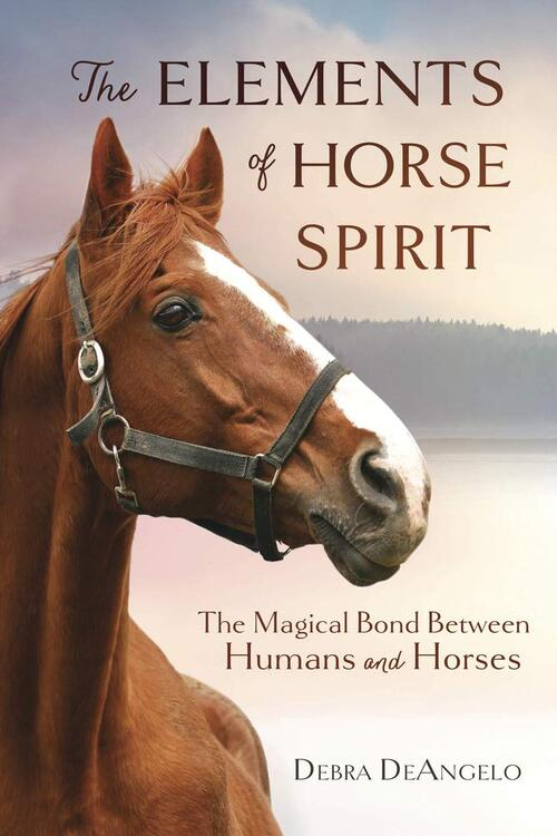 The Elements of Horse Spirit