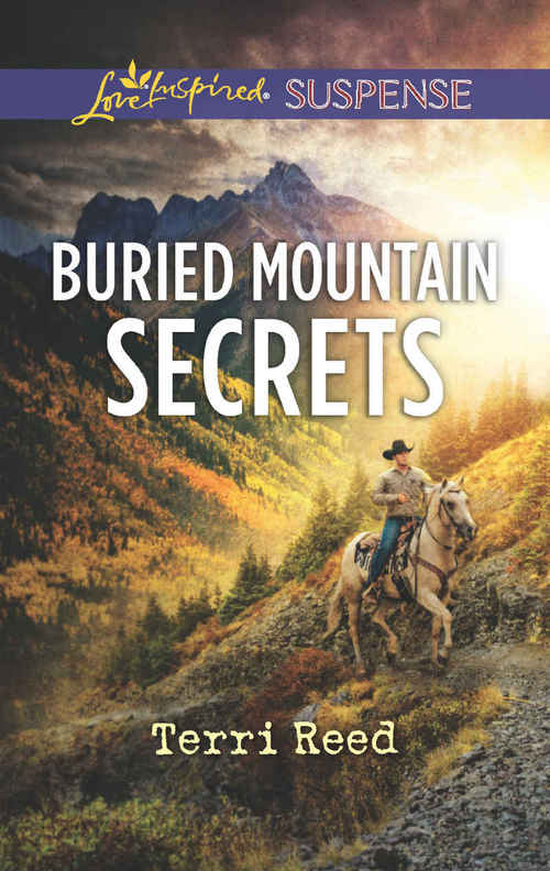 Buried Mountain Secrets by Terri Reed