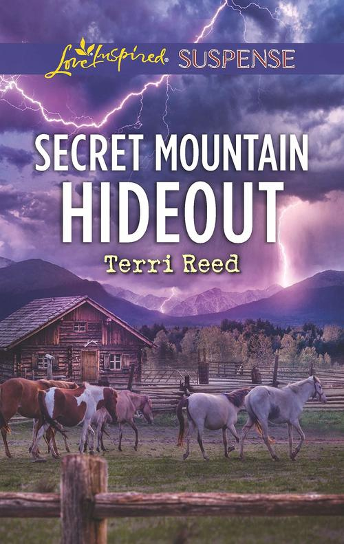 Secret Mountain Hideout by Terri Reed