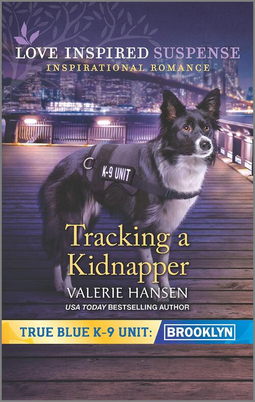 Tracking a Kidnapper by Valerie Hansen