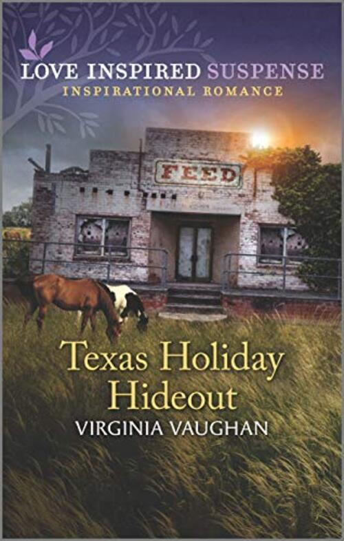 Texas Holiday Hideout by Virginia Vaughan