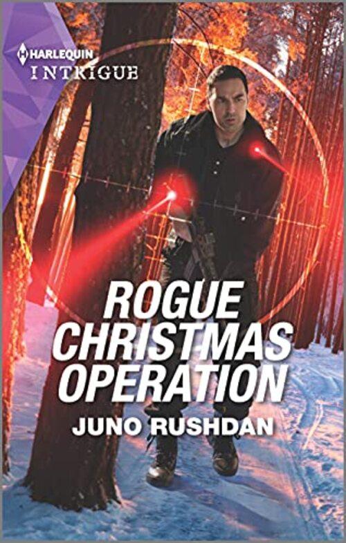 Rogue Christmas Operation