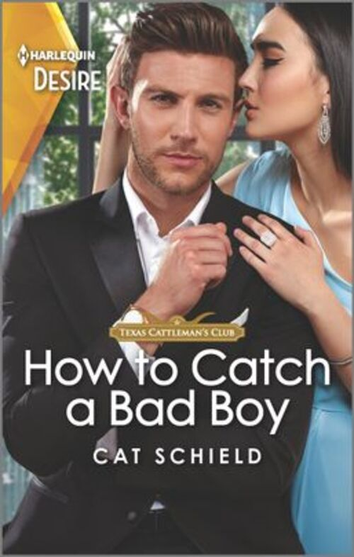 How to Catch a Bad Boy by Cat Schield