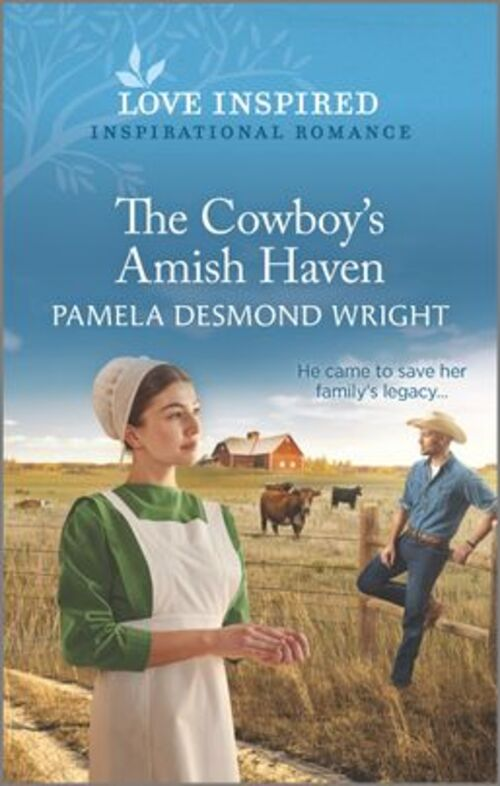 The Cowboy's Amish Haven by Pamela Desmond Wright