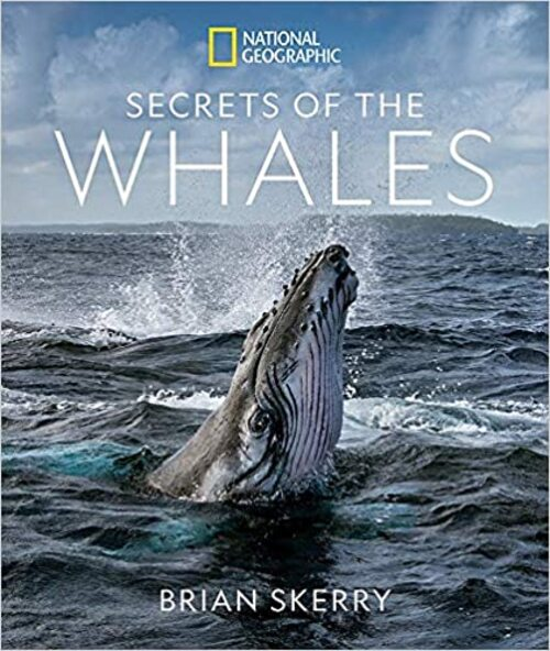 Secrets Of The Whales by Brian Skerry