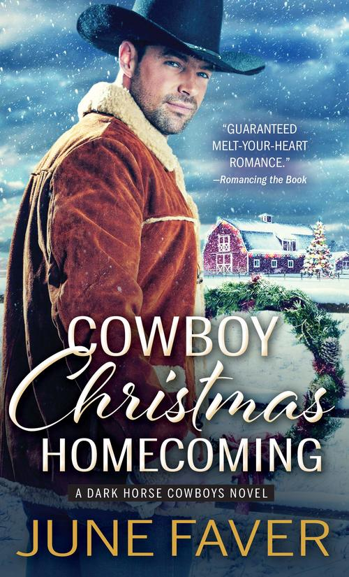 Cowboy Christmas Homecoming by June Faver