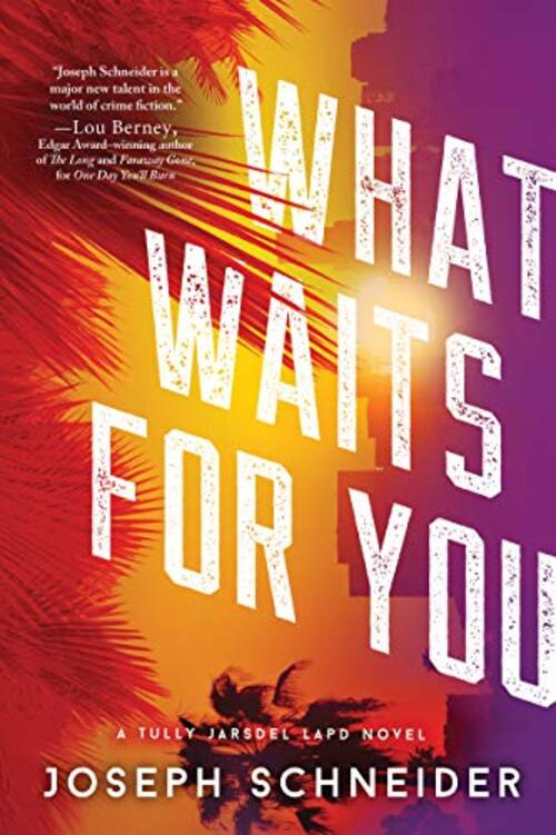 What Waits for You by Joseph Schneider