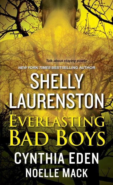 Everlasting Bad Boys by Shelly Laurenston