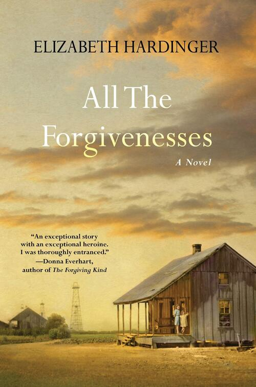 All the Forgivenesses by Elizabeth Hardinger
