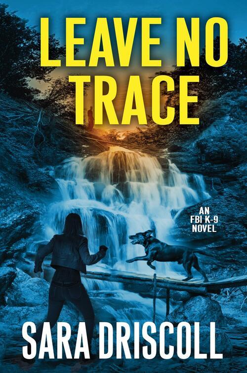 Leave No Trace by Sara Driscoll