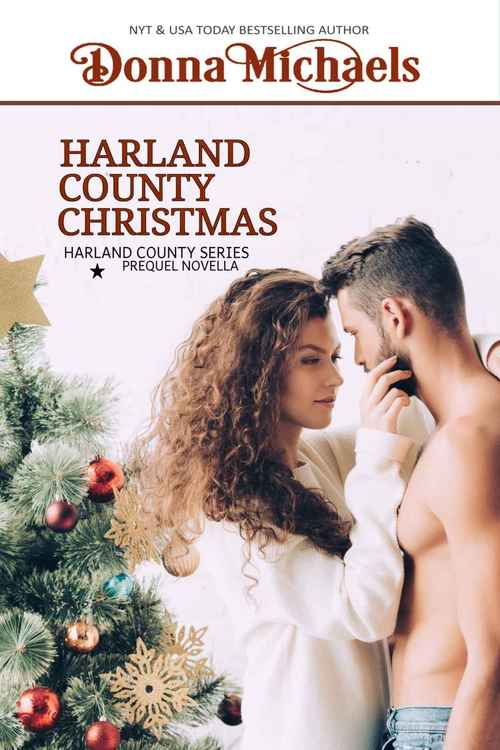 Harland County Christmas by Donna Michaels