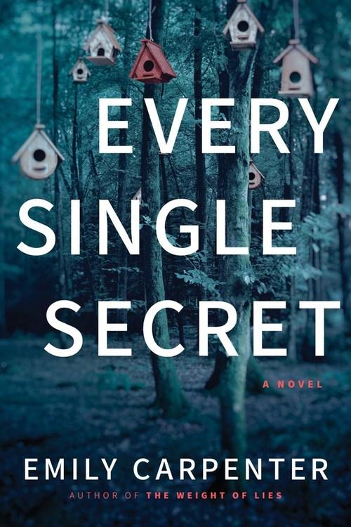 Every Single Secret by Emily Carpenter