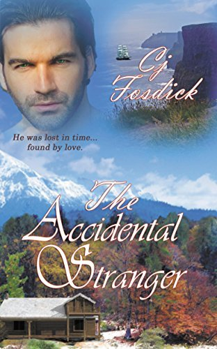 The Accidental Stranger by Cj Fosdick