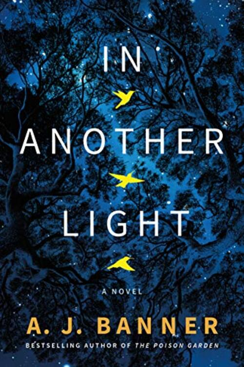 In Another Light by A.J. Banner