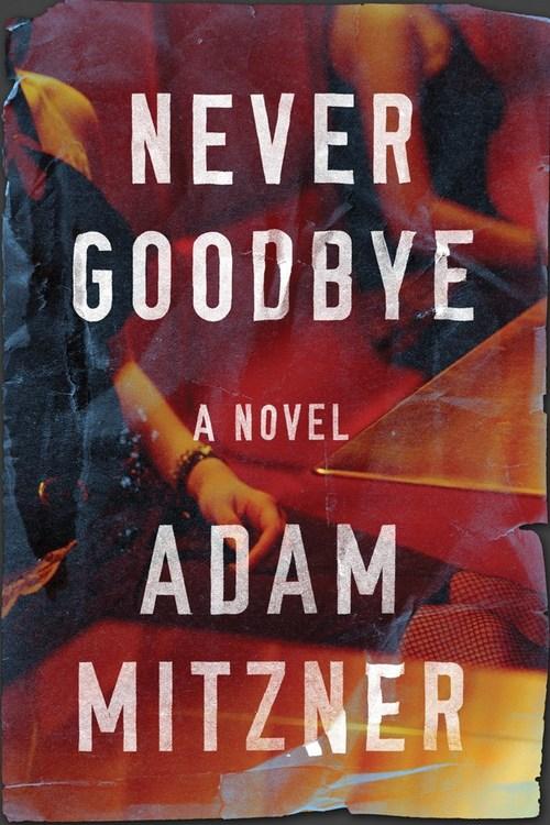 Never Goodbye by Adam Mitzner