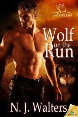 Wolf on the Run by N.J. Walters