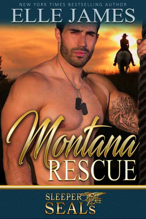 Montana Rescue by Elle James