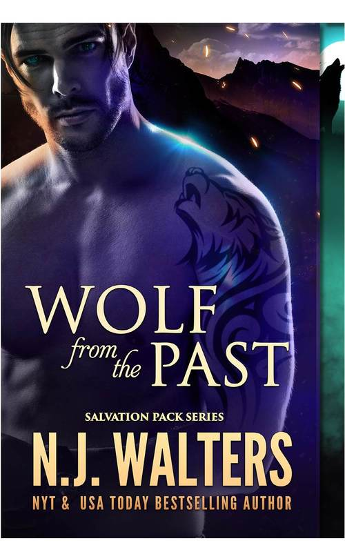 Wolf from the Past by N.J. Walters