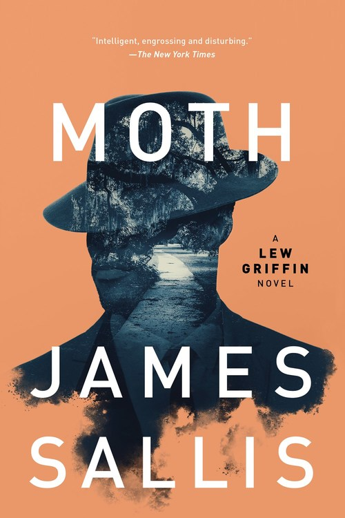 Moth by James Sallis