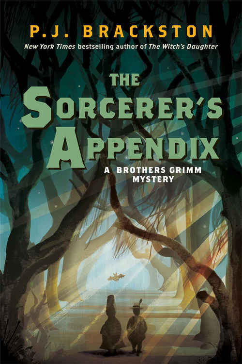 The Sorcerer's Appendix by P.J. Brackston