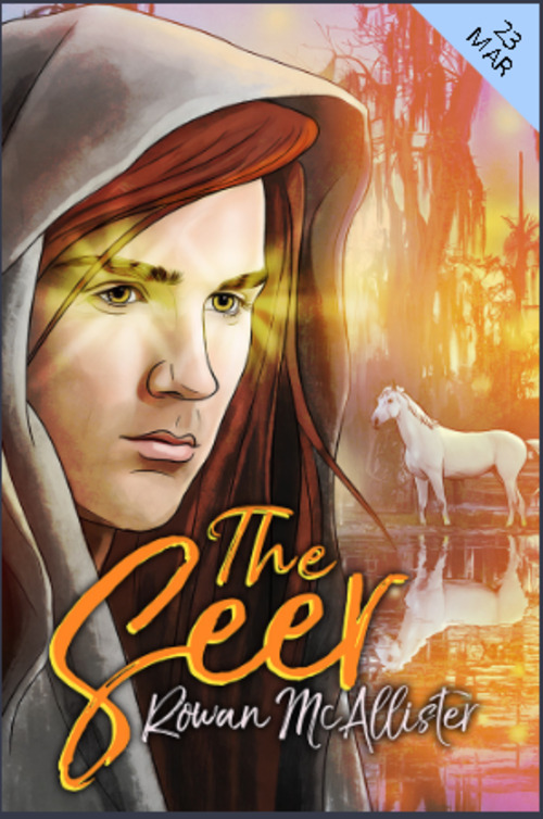 The Seer by Rowan McAllister